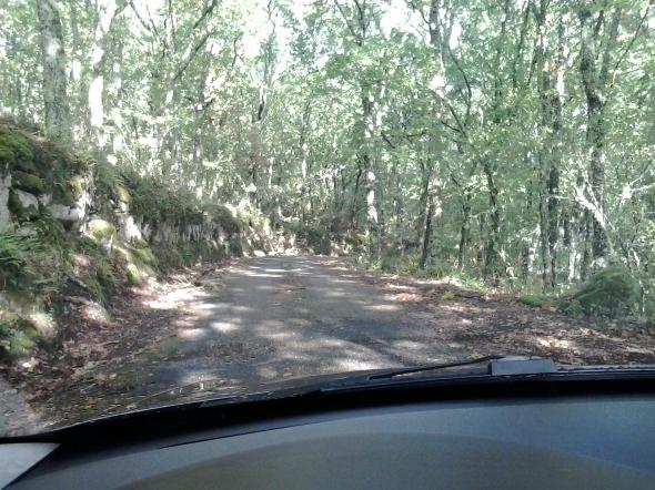 Estrada Urania