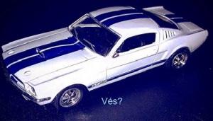 Mustang-ves